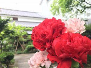 母の日、ご家族のお母様にお花をプレゼント
