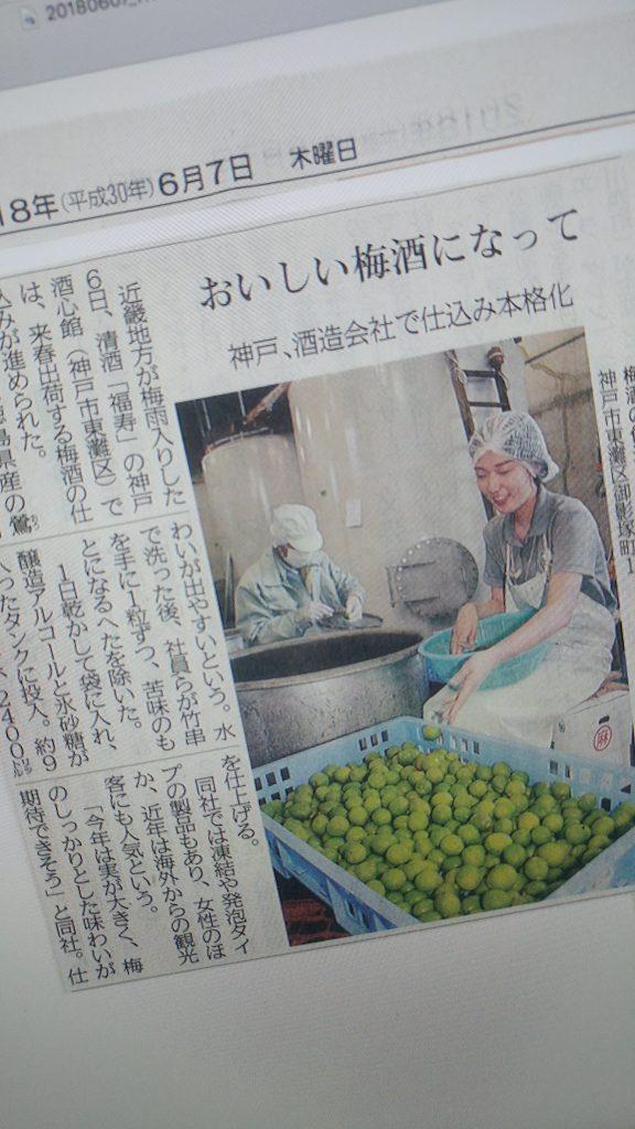 神戸新聞に取りあげていただきました
