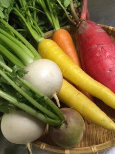秋撮影お野菜