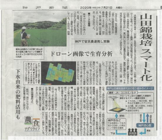 山田錦栽培 スマート化について神戸新聞で紹介されました