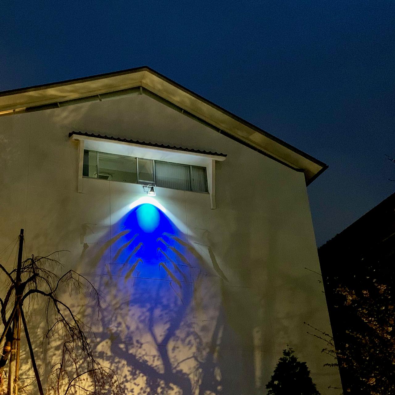 LIGHT IT UP BLUEに今年も参加しています