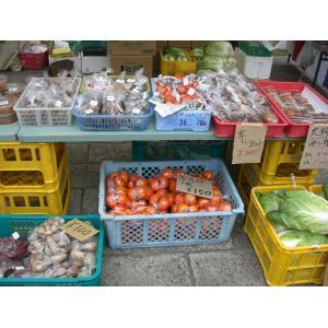 2010年10月 新鮮野菜市のお知らせ