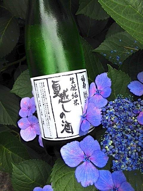 数量限定 生酛純米生酒 夏越しの酒販売のお知らせ|完売いたしました